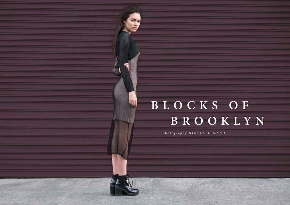 Blocks of Brooklyn