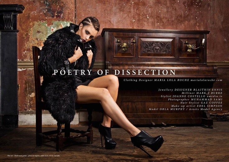 Poetry of Dissection