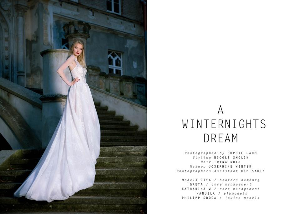 a-winternights-dream