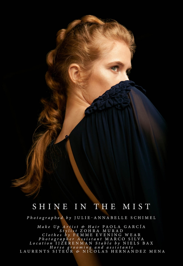 shine-in-the-mist