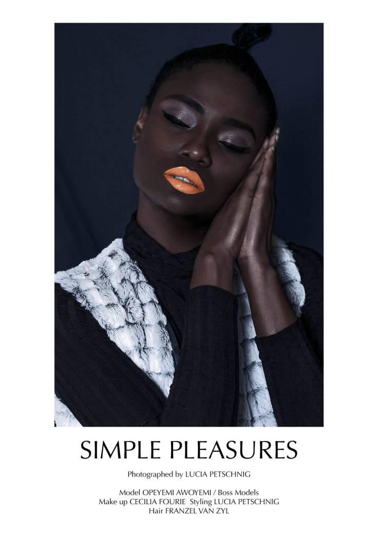 Simple Pleasures single